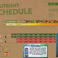 BioBizz feeding schedule copy