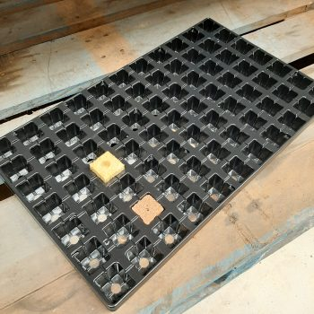 77 Cell Tray