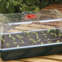 Garland Large High Dome Propagator
