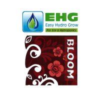 EHG bloom 700 700