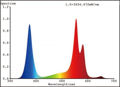 Mars II 1600 Spectrum