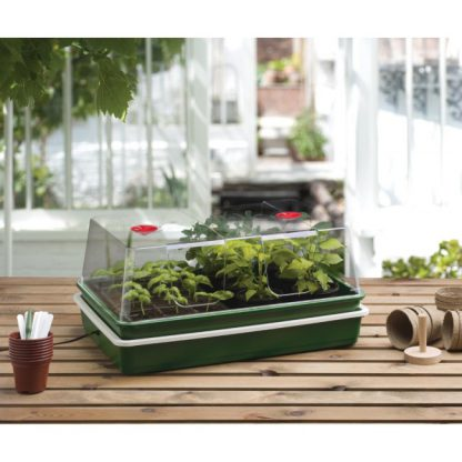 Professional Variable Temperature Control Propagator