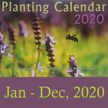 Planting Calendar Summer Edition 2020