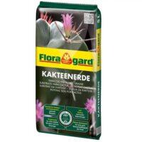 Floragard Cactus